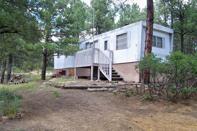 TBD Deer Path Circle, Weston, CO 81091 (MLS #20-374) :: Bachman & Associates