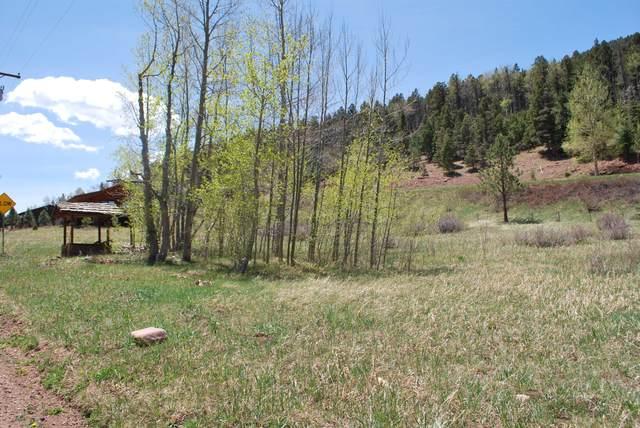 TBD S Meadow Rd 4 & 5, Cuchara, CO 81055 (MLS #20-375) :: Bachman & Associates