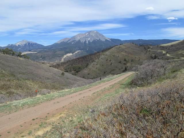 30 Raspberry Mountain Ranch F3, La Veta, CO 81055 (MLS #20-376) :: Bachman & Associates