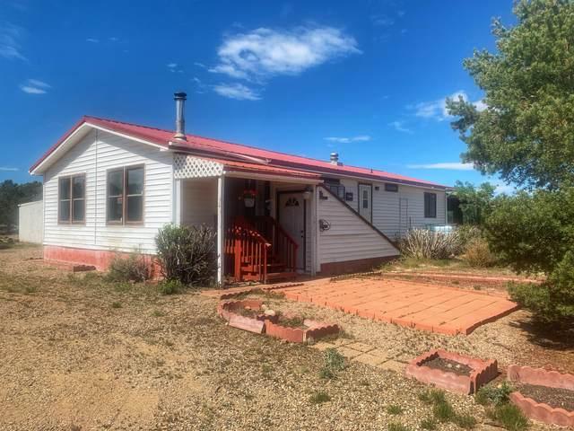 116 Indian Creek Rd, Walsenburg, CO 81089 (MLS #20-416) :: Bachman & Associates