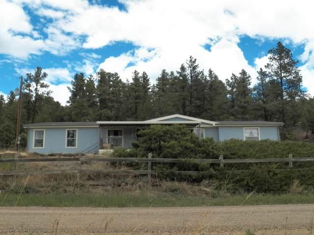 21099 Trujillo Creek Road, Aguilar, CO 81020 (MLS #20-419) :: Bachman & Associates