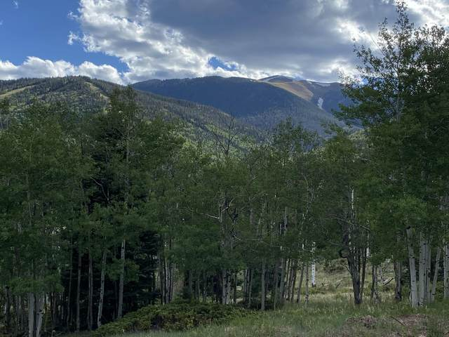 TBD Valley Vista, Cuchara, CO 81055 (MLS #20-488) :: Bachman & Associates