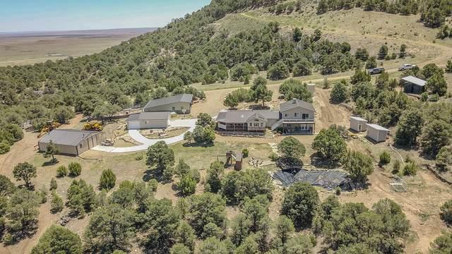 26131 Pinon Ridge Drive, Aguilar, CO 81020 (MLS #20-508) :: Bachman & Associates
