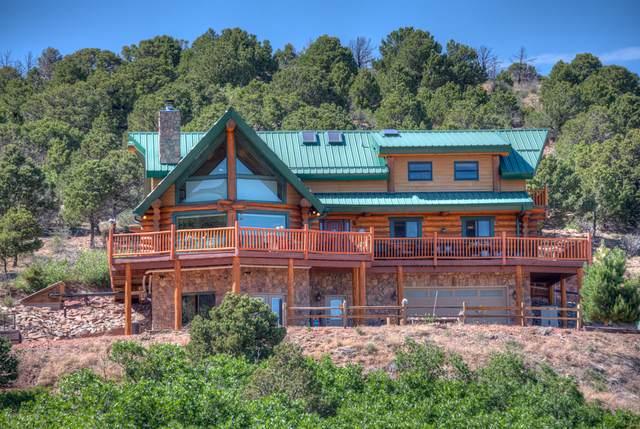 1491 Bear Springs Rd, Walsenburg, CO 81089 (MLS #20-564) :: Bachman & Associates