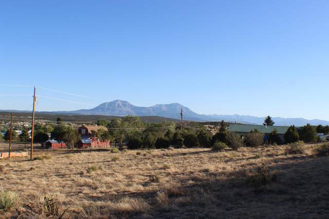 TBD West Willow Street Lots 1-6, Walsenburg, CO 81089 (MLS #20-566) :: Bachman & Associates