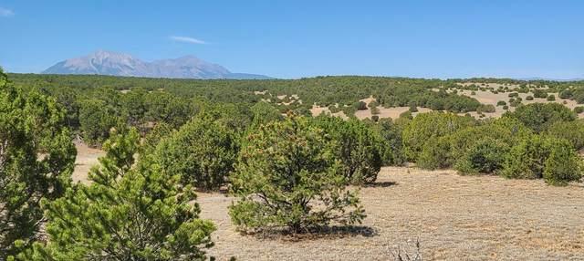 TBD Silver Spurs Ranch #4 #85, Walsenburg, CO 81089 (MLS #20-618) :: Bachman & Associates