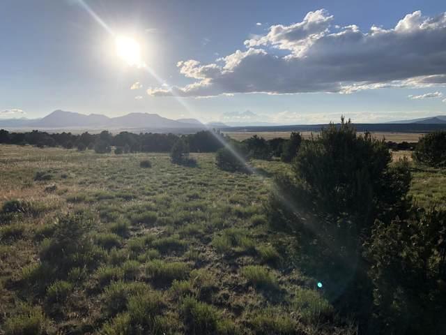 61 River Ridge Ranch Phs 2, Walsenburg, CO 81089 (MLS #20-637) :: Bachman & Associates