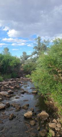 TBD 64 Acres With River, La Veta, CO 81055 (MLS #20-668) :: Bachman & Associates