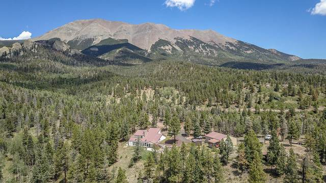 23961 Mt. Massive Drive & Lot 12, Aguilar, CO 81020 (MLS #20-706) :: Bachman & Associates
