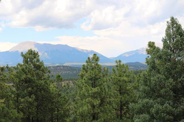 Rancho Escondido Unit 3 Lot 17C, Weston, CO 81091 (MLS #20-709) :: Bachman & Associates
