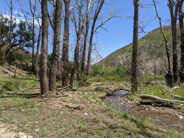 TBD La Veta Ranches Lot 30, La Veta, CO 81055 (MLS #20-714) :: Bachman & Associates