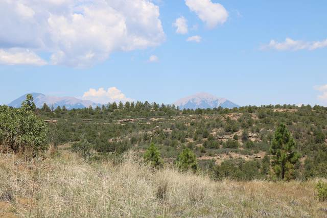 TBD Smith Canyon Road, Trinidad, CO 81082 (MLS #20-759) :: Bachman & Associates