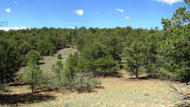 TBD County Road 53.5, Trinidad, CO 81082 (MLS #20-764) :: Bachman & Associates
