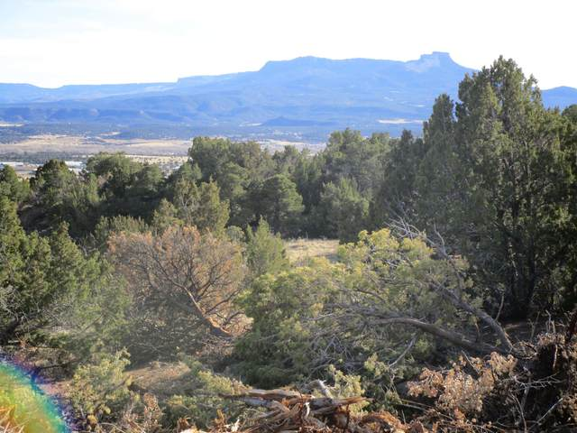87 County Rd 71.1, Trinidad, CO 81082 (MLS #20-765) :: Bachman & Associates