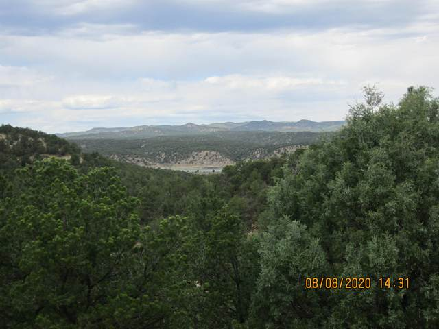 32051 Oso Canyon Rd, Trinidad, CO 81082 (MLS #20-776) :: Bachman & Associates
