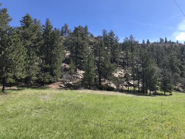 54&55 Cimarron Ranches Phase 1, Weston, CO 81091 (MLS #20-782) :: Bachman & Associates
