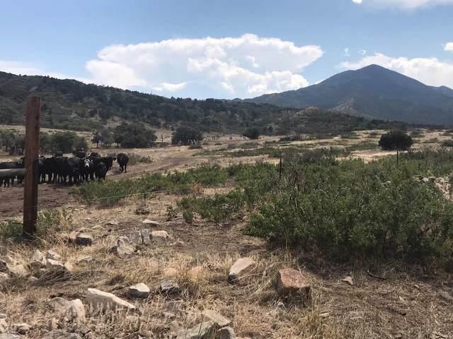 25A Majors Ranch Ph 3, Walsenburg, CO 81089 (MLS #20-855) :: Bachman & Associates
