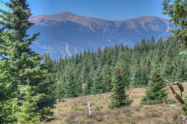 Lot 9 Timber Ridge At Cordova Pass, Cuchara, CO  (MLS #20-918) :: Bachman & Associates