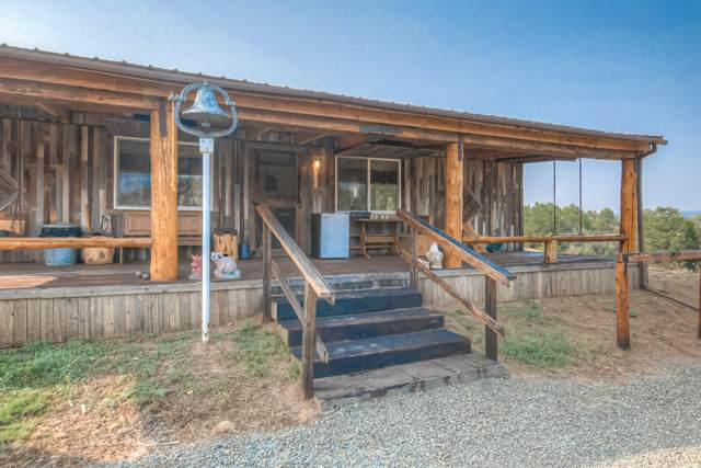 10491 Primero Ranch Rd, Trinidad, CO 81082 (MLS #20-956) :: Bachman & Associates
