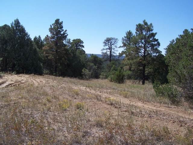 NWNE053264 Timber Canyon Ranch Rd #157, Trinidad, CO 81082 (MLS #20-961) :: Bachman & Associates