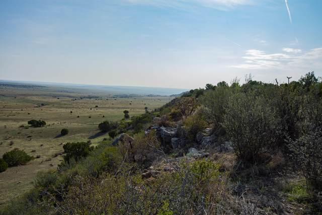 Apache Creek Ranches Lot 14, Walsenburg, CO  (MLS #20-962) :: Bachman & Associates