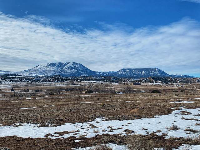 Southwinds Ranch 11&12, Gardner, CO 81040 (MLS #21-1) :: Bachman & Associates