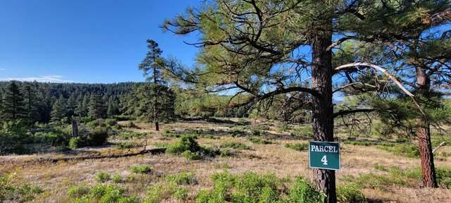 Beaver Creek Ranch Drive #4, Bayfield, CO 81122 (MLS #21-1001) :: Bachman & Associates