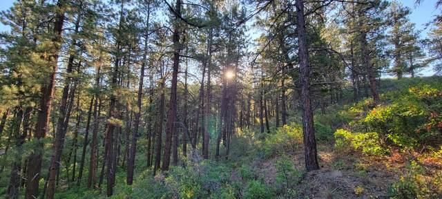 Beaver Creek Ranch Road #5, Bayfield, CO 81122 (MLS #21-1002) :: Bachman & Associates