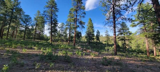 Beaver Creek Ranch Drive #17, Bayfield, CO 81122 (MLS #21-1004) :: Bachman & Associates