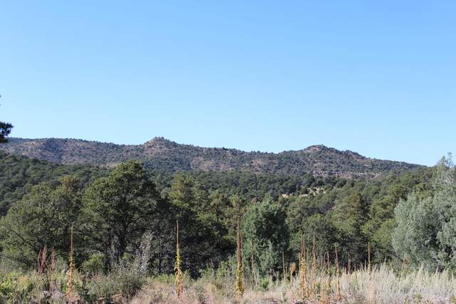 TBD Fisher Peak Ranch Lot M5, Trinidad, CO 81082 (MLS #21-1047) :: Bachman & Associates