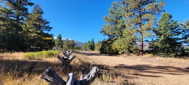 Knotty Pine #52, Howard, CO 81233 (MLS #21-1098) :: Bachman & Associates