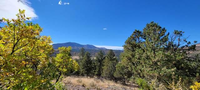 Autumn Creek Drive #68, canon city, CO 81212 (MLS #21-1099) :: Bachman & Associates