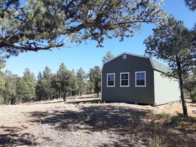 13115 Silver Spruce Circle Lot # 297, Weston, CO 81091 (MLS #21-1111) :: Bachman & Associates