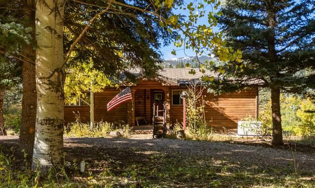 47 Britton Rd, Cuchara, CO 81055 (MLS #21-1122) :: Bachman & Associates