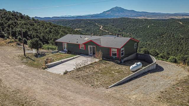 1237 Mountain View Drive, Walsenburg, CO 81089 (MLS #21-1133) :: Bachman & Associates
