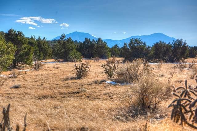 TBD River Ridge Ranch Lot 107, Walsenburg, CO 81089 (MLS #21-15) :: Bachman & Associates