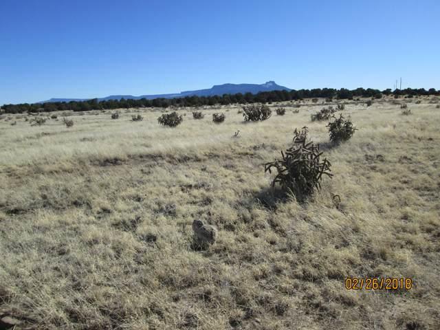 Rancho Verde Tract 96, Trinidad, CO 81082 (MLS #21-157) :: Bachman & Associates