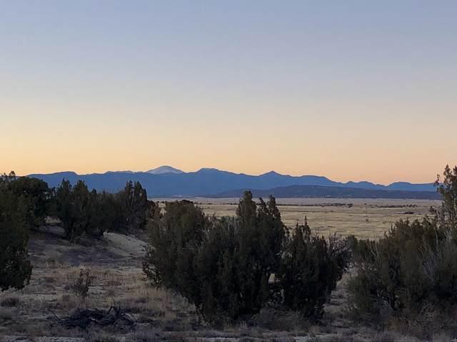 TBD Cedarwood Ct #9, Pueblo West, CO 81007 (MLS #21-158) :: Bachman & Associates
