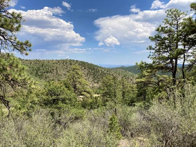 13325 Little Bear Canyon, Weston, CO 81091 (MLS #21-189) :: Bachman & Associates