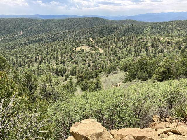 13230 Little Bear Canyon, Weston, CO 81091 (MLS #21-190) :: Bachman & Associates