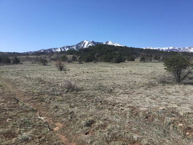 3b Majors Ranch Phase 4, Walsenburg, CO 81089 (MLS #21-311) :: Bachman & Associates