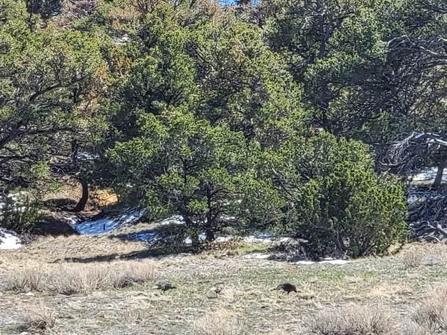 TBD Navajo Ranch Estates 171 & 172, Walsenburg, CO 81089 (MLS #21-331) :: Bachman & Associates