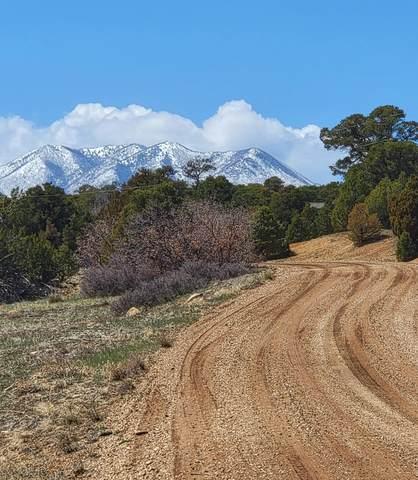 TBD Navajo Ranch Resorts #2 62 & 63, Walsenburg, CO 81089 (MLS #21-389) :: Bachman & Associates
