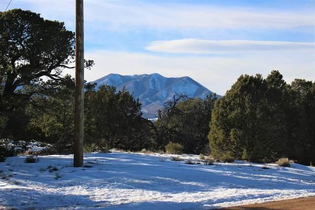TBD Navajo Ranch Resorts #3 #89, Walsenburg, CO 81089 (MLS #21-4) :: Bachman & Associates
