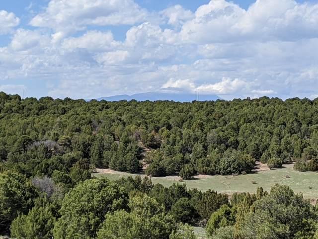 TBD Silver Spurs Ranch :Lot 114, Walsenburg, CO 81089 (MLS #21-410) :: Bachman & Associates