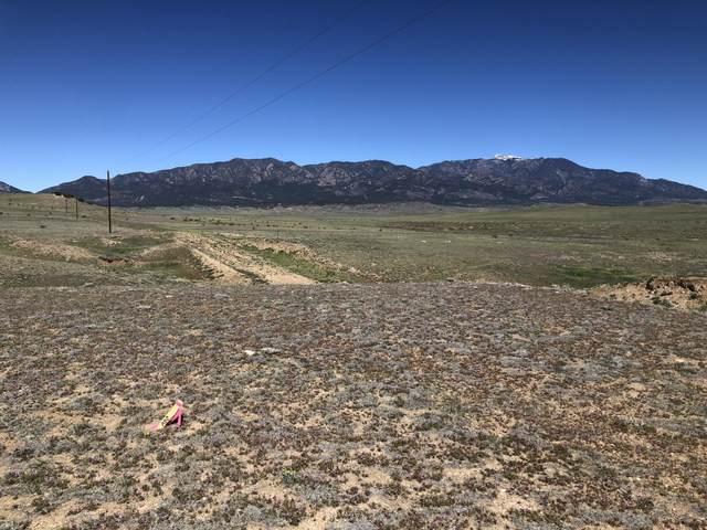 77 Colorado Buffalo Ranch, Walsenburg, CO  (MLS #21-437) :: Bachman & Associates