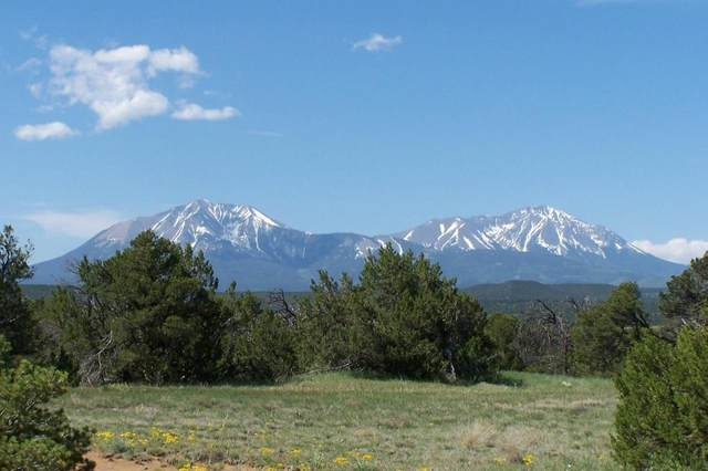 TBD Cedar Canyon Rd #113, Walsenburg, CO 81089 (MLS #21-47) :: Bachman & Associates