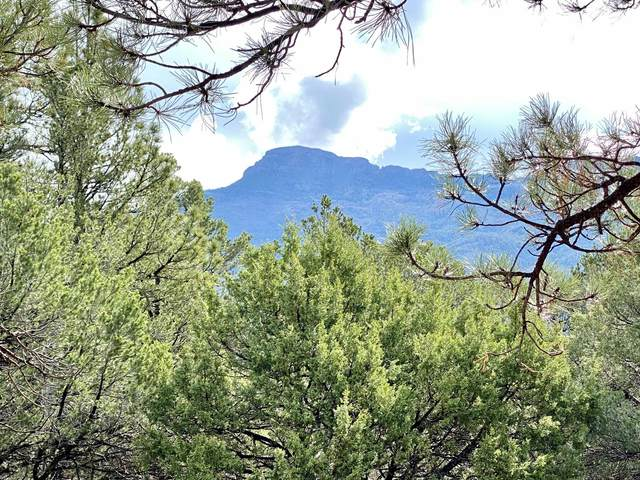 5512 Elk Ridge Trail, Trinidad, CO 81082 (MLS #21-471) :: Bachman & Associates