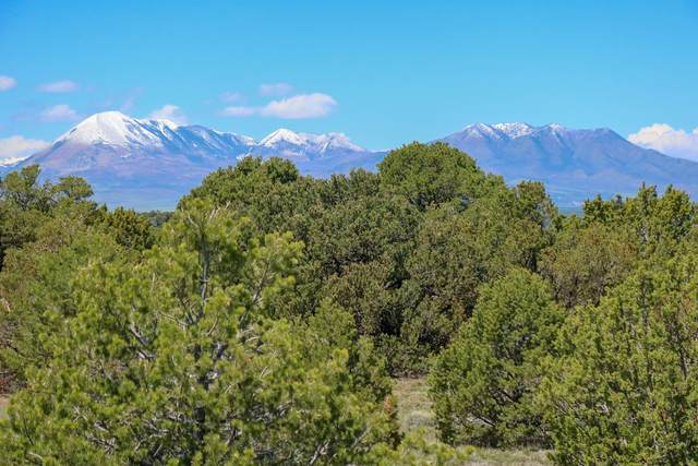 TBD Canyon Springs Rd #146, Walsenburg, CO 81089 (MLS #21-479) :: Bachman & Associates