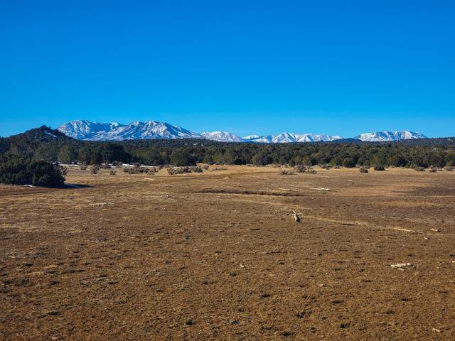 TBD County Road 521, Walsenburg, CO 81089 (MLS #21-49) :: Bachman & Associates